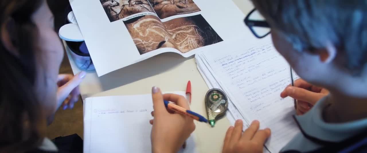 , Curriculum